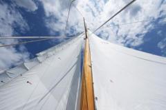 Heron II Sail